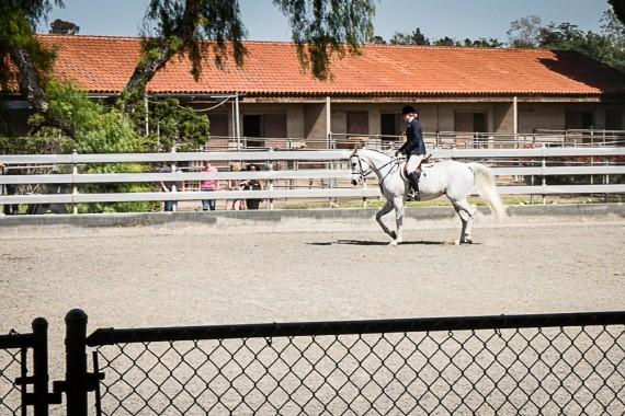 W. K. Kellogg Arabian Horse Center